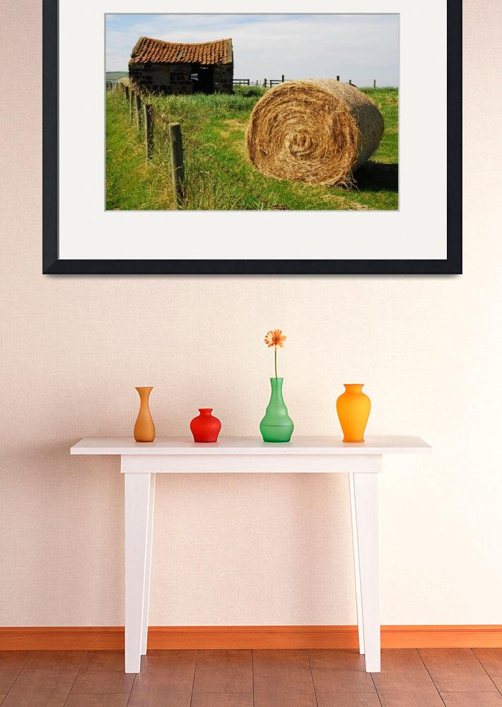 """Haybale on coastal path&quot  by BobDenton"