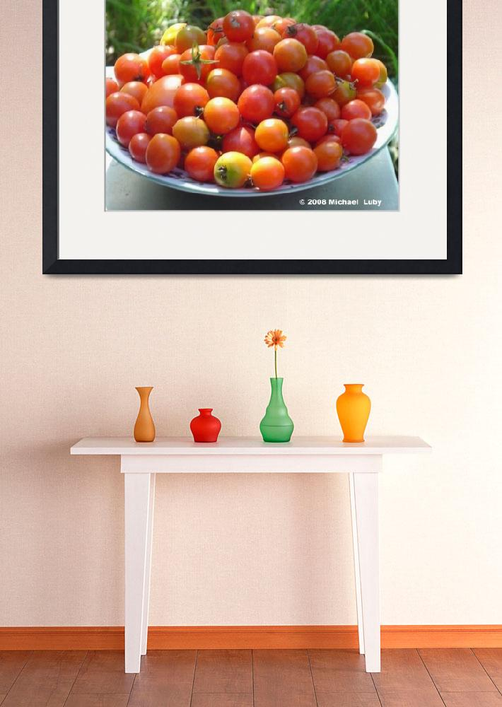 """Tomato Time&quot  (2008) by michaelluby"