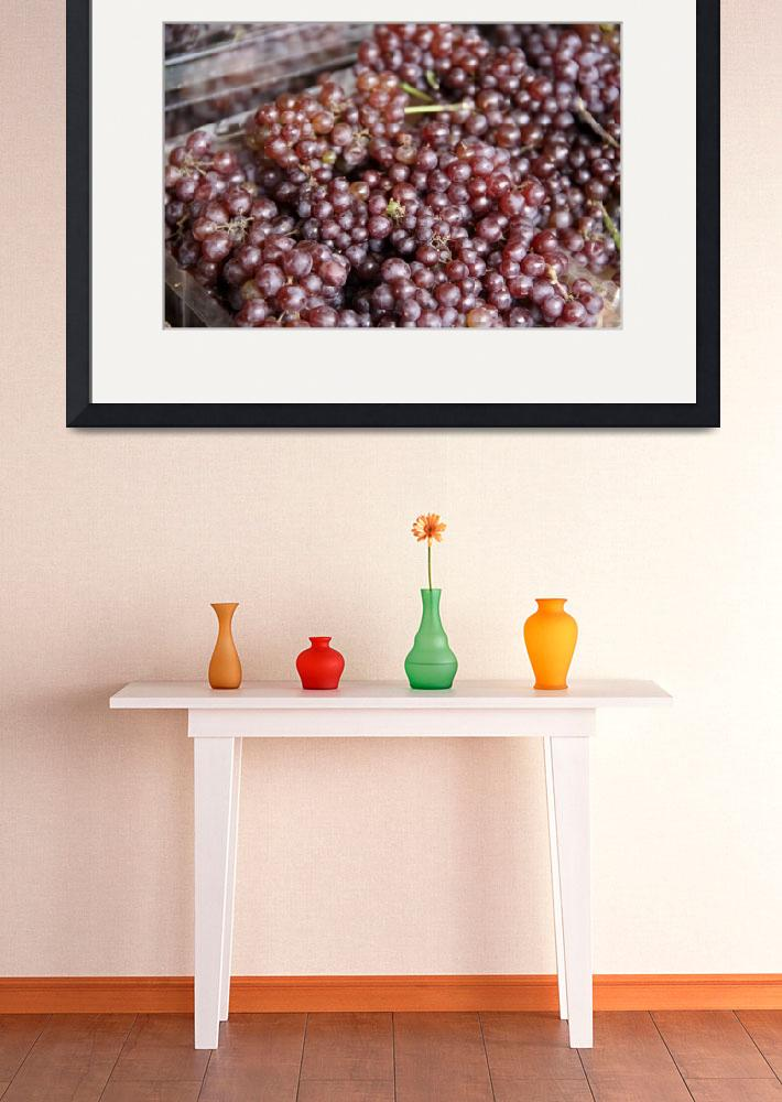 """Grapes&quot  (2011) by stephcollier"