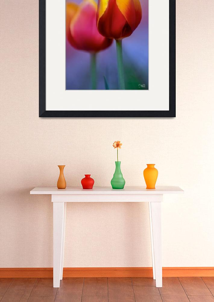 """Tulips With a Flair&quot  (2008) by DigiPix"