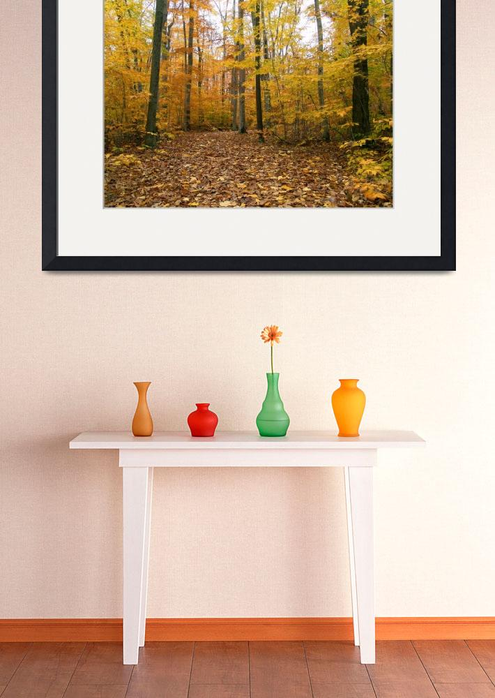"""Autumn Stroll in Sapsucker Woods&quot  (2004) by MichaelStephenWills"