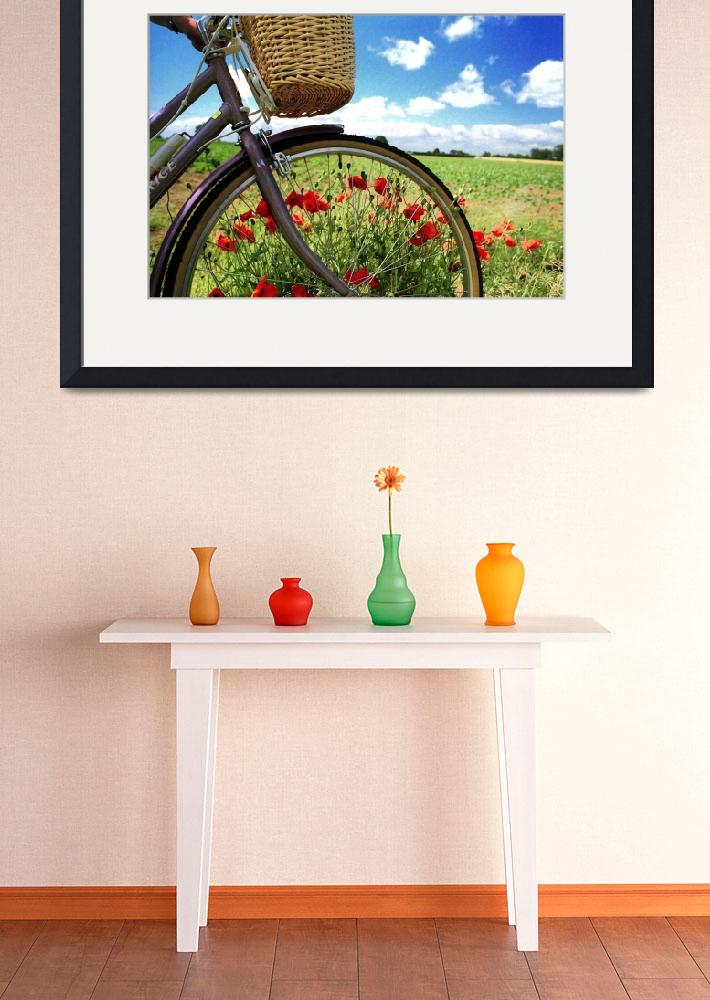 """poppycycle&quot  by JohnRobertson"