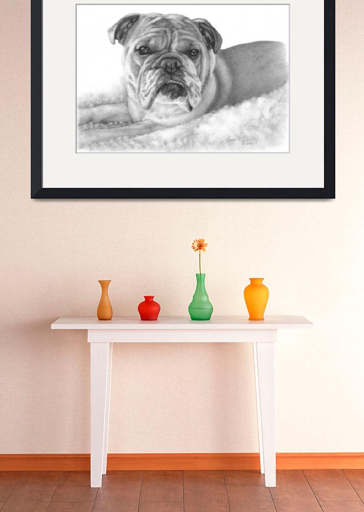 """Allie, English Bulldog&quot  (2008) by sdonley"