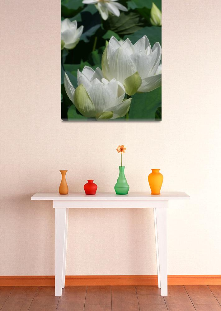 """LOTUS 3 on Canvas&quot  (2010) by Japanesque"