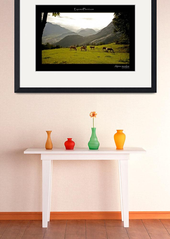 """alpine meadow with horses, in Austria&quot  by ExposedPlanet"