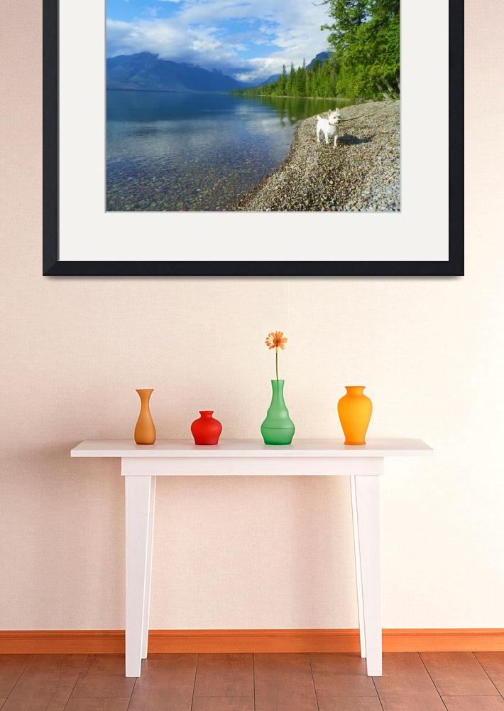 """Travel With Beni - West Highland White Terrier&quot  by artsandi"