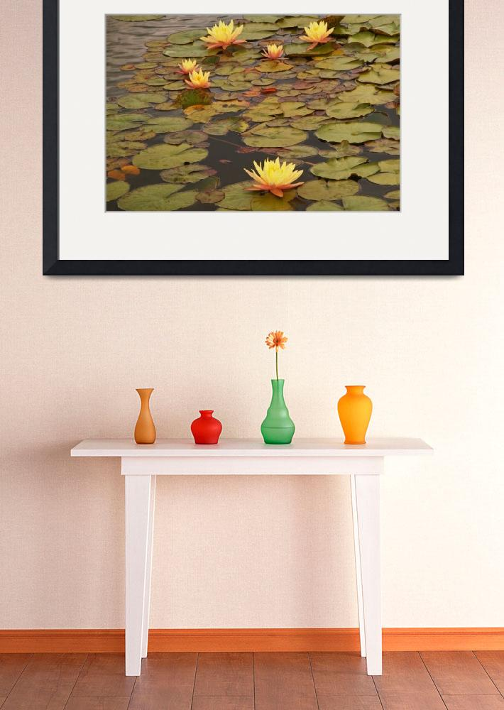 """WaterLilies&quot  (2009) by janelkaufman"