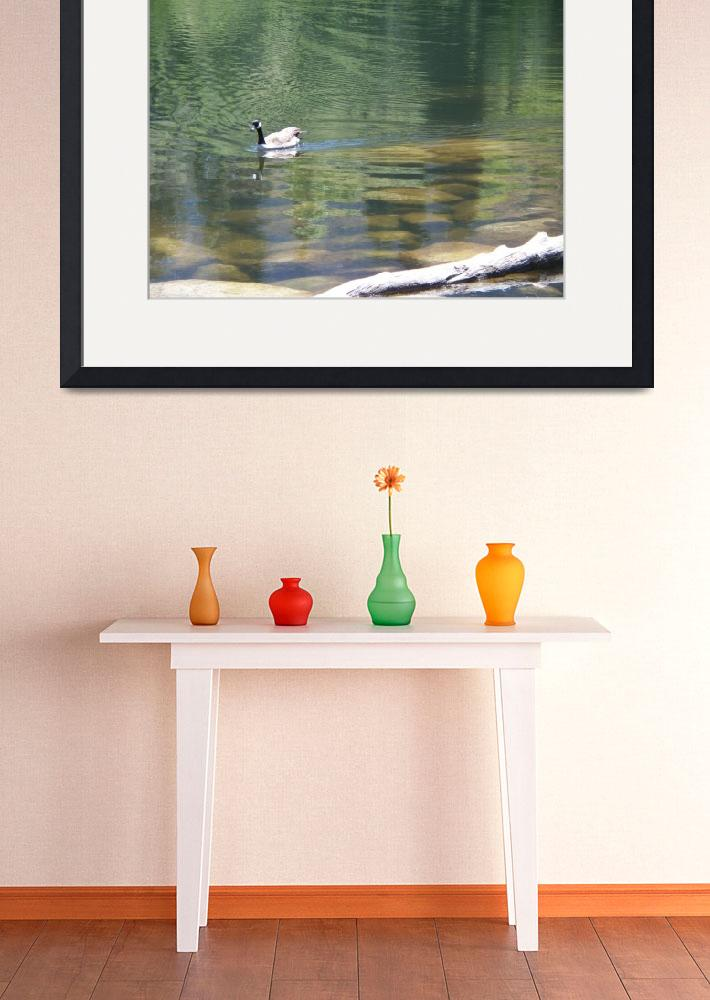 """Lake ducks&quot  (2009) by getproducts"