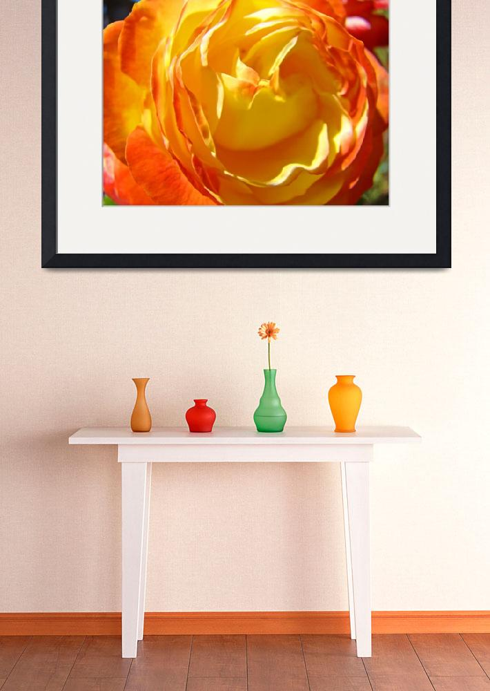 """Rose Flower art print Orange Yellow Roses Center&quot  (2010) by BasleeTroutman"