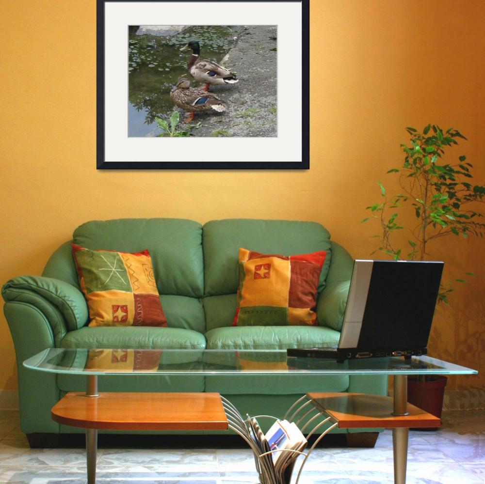 """Ducks by a Pond&quot  (2009) by parakeetart"