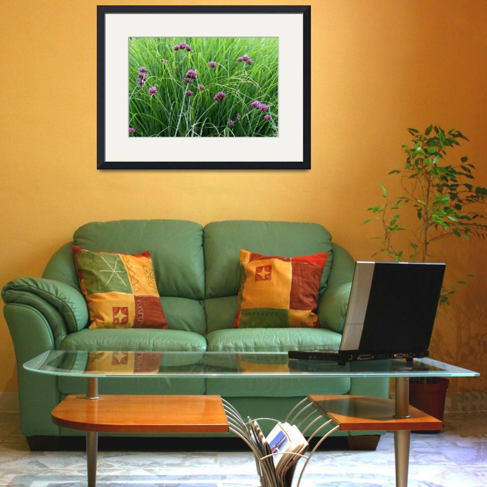 """Verbena and Grasses&quot  (2012) by KsWorldArt"