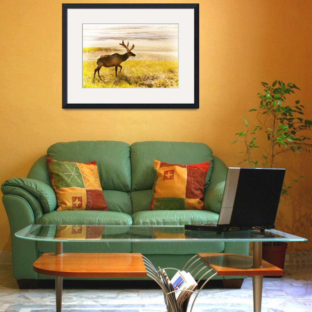 """Elk Wanders On Yellow Landscape&quot  by DesignPics"