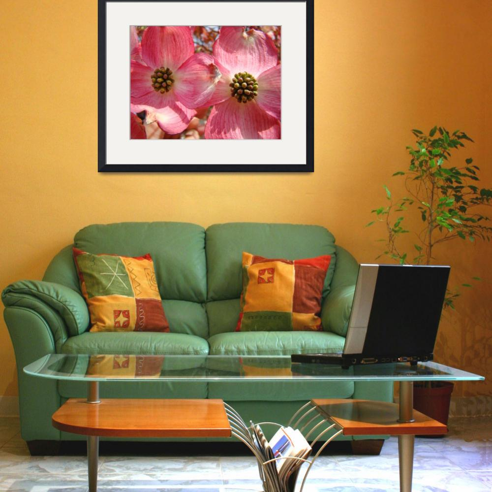 """Beautiful Pink Dogwood Flowers art print Floral&quot  (2010) by BasleeTroutman"