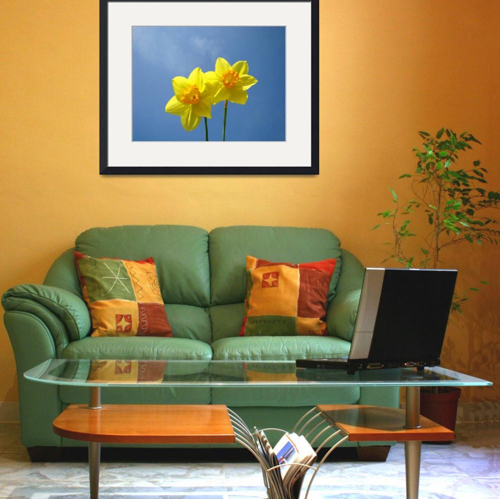 """Spring Daffodils Flowers Art Prints Blue Sky&quot  (2014) by BasleeTroutman"