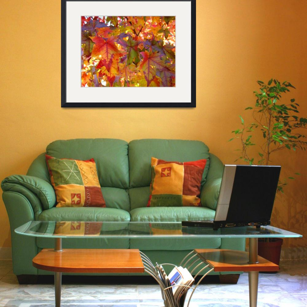 """Red Orange Autumn Leaves Fall art prints Trees&quot  (2013) by BasleeTroutman"