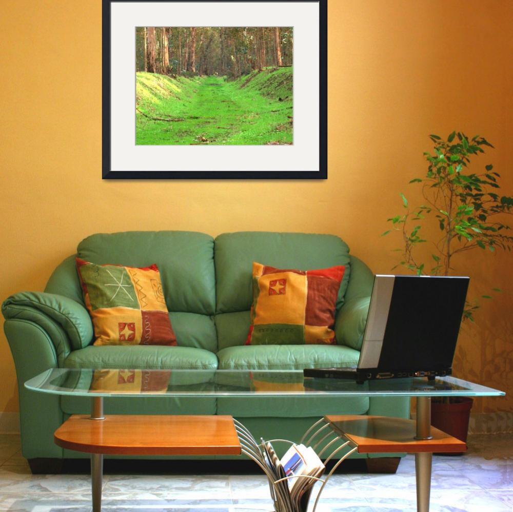"""Abbey Buggy Grass Rug&quot  (2012) by photoartful"