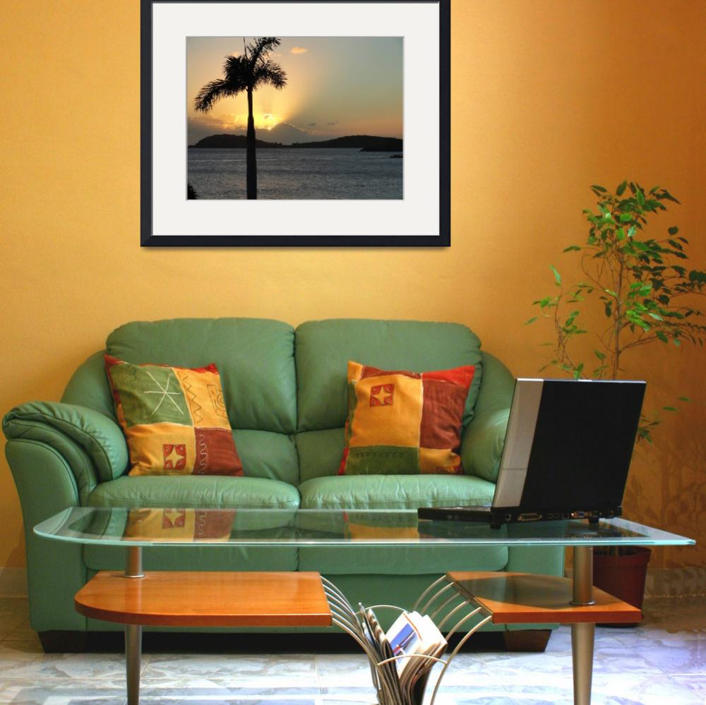 """Palm Tree Sunset&quot  (2012) by Renie"