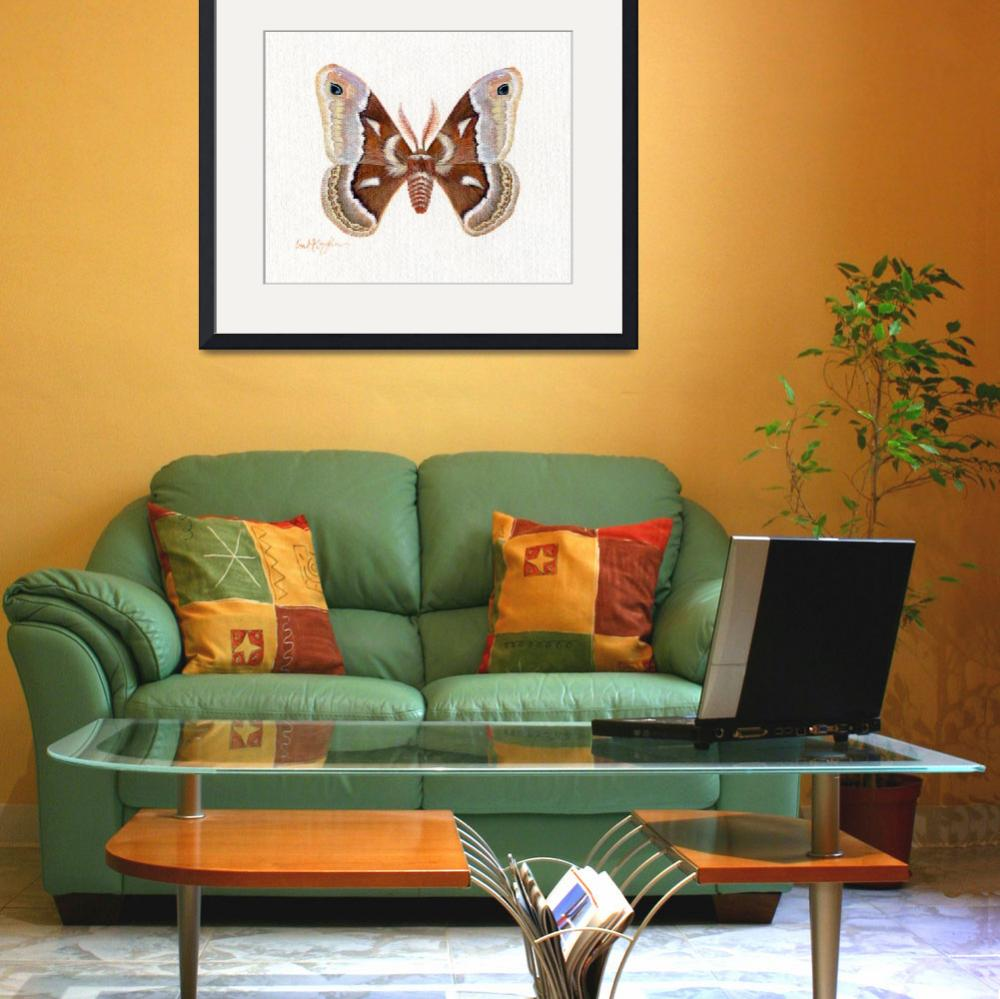 """Glovers SilkMoth&quot  by LisaMclaughlin"