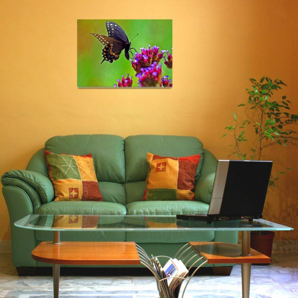 """Butterfly  Black Swallowtail&quot  (2012) by KsWorldArt"