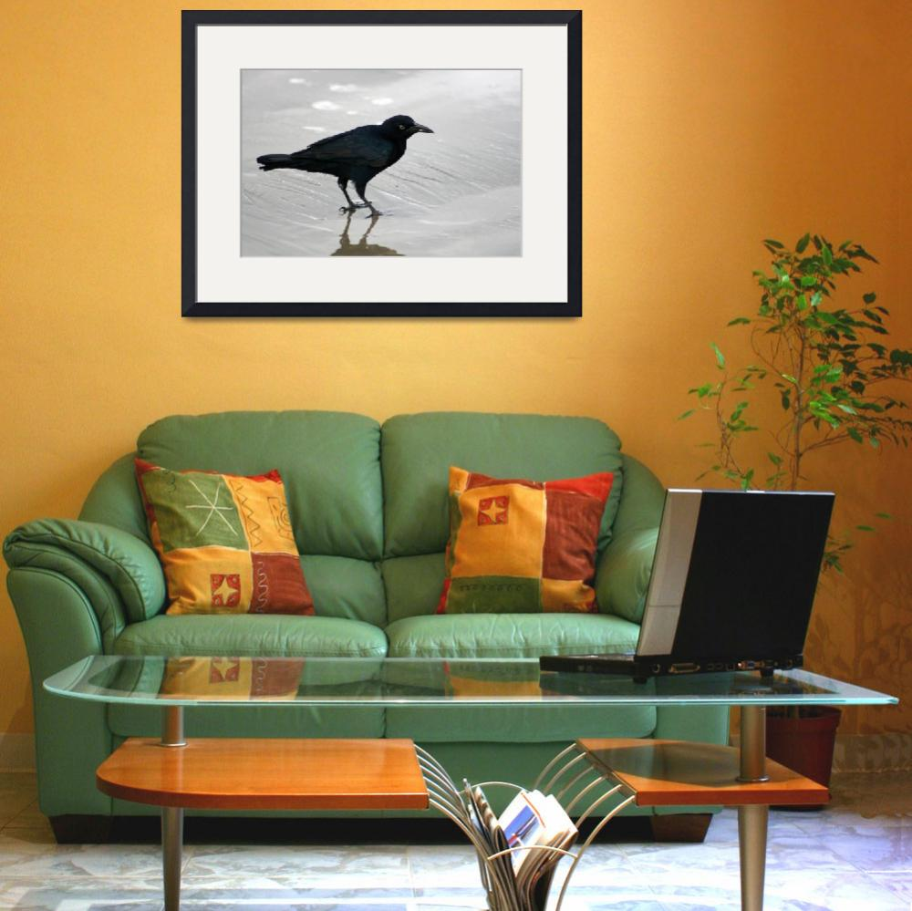 """Crow Reflected on Wet Sand&quot  (2012) by rhamm"