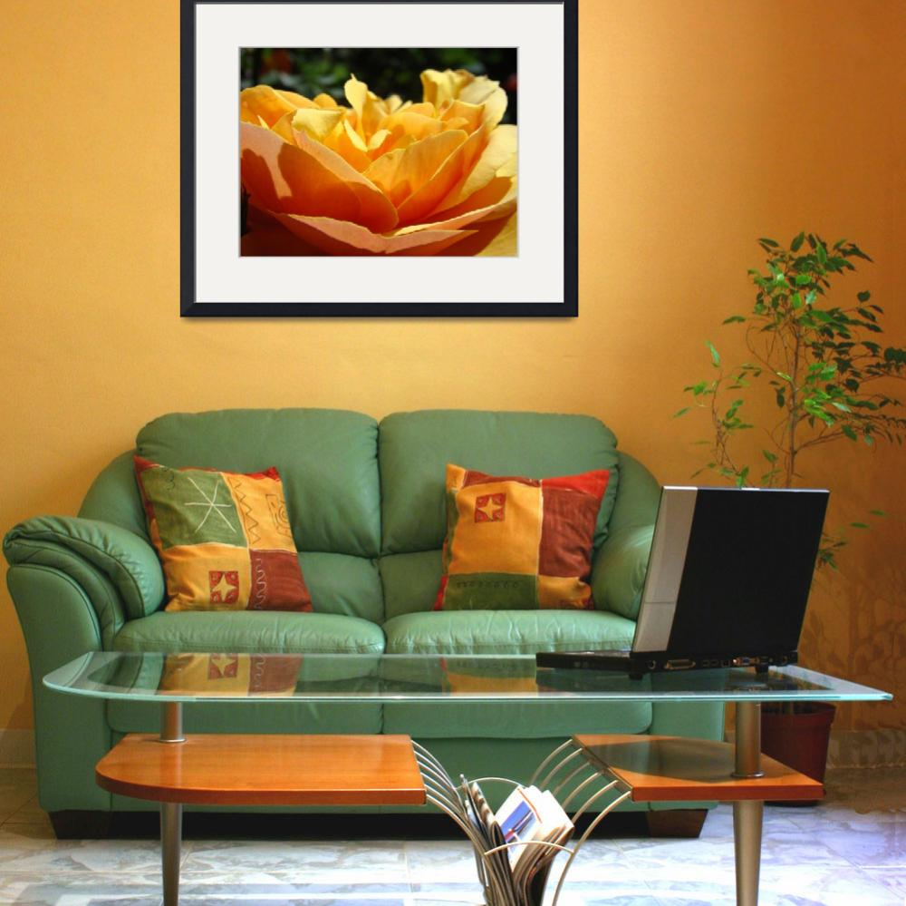 """OFFICE ART Prints ROSE Orange Baslee Troutman&quot  (2009) by BasleeTroutman"