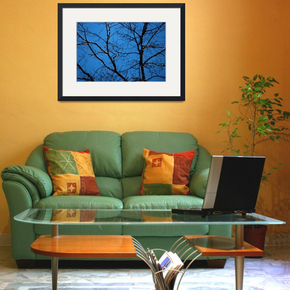 """Tree Silhouette with Blue Sky&quot  (2005) by BobFikePhoto"