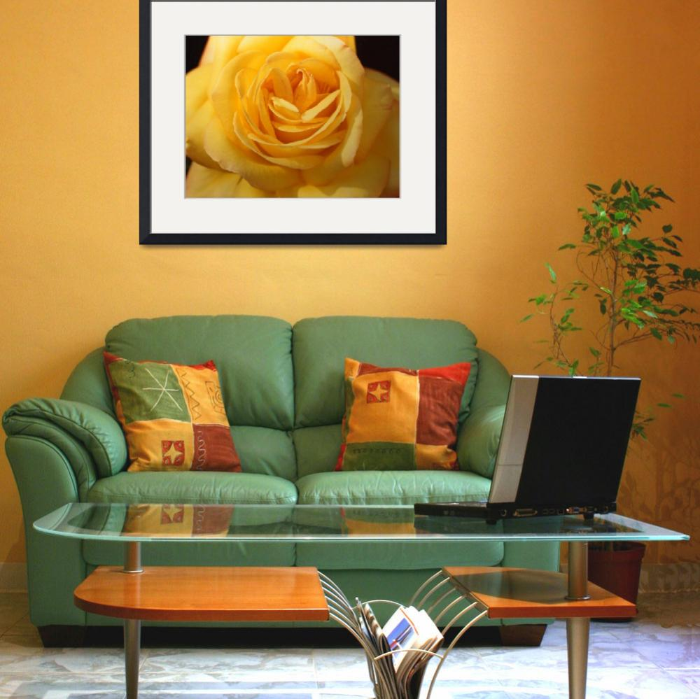 """Yellow Rose&quot  (1995) by Christinebeth"