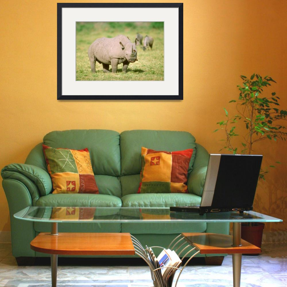 """Endangered Black Rhino&quot  by ArtLoversOnline"