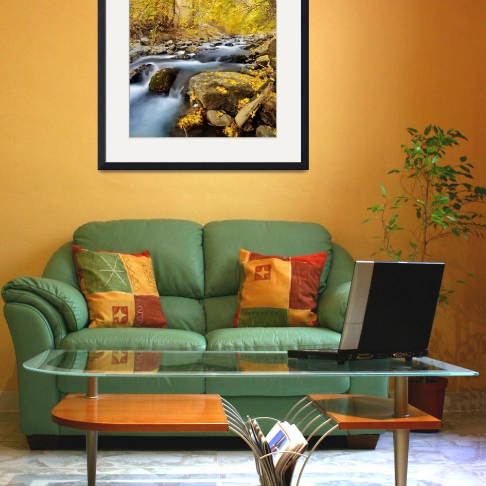 """american fork river 2010 autumn yellow leaves 5 cr&quot  by houstonryan"