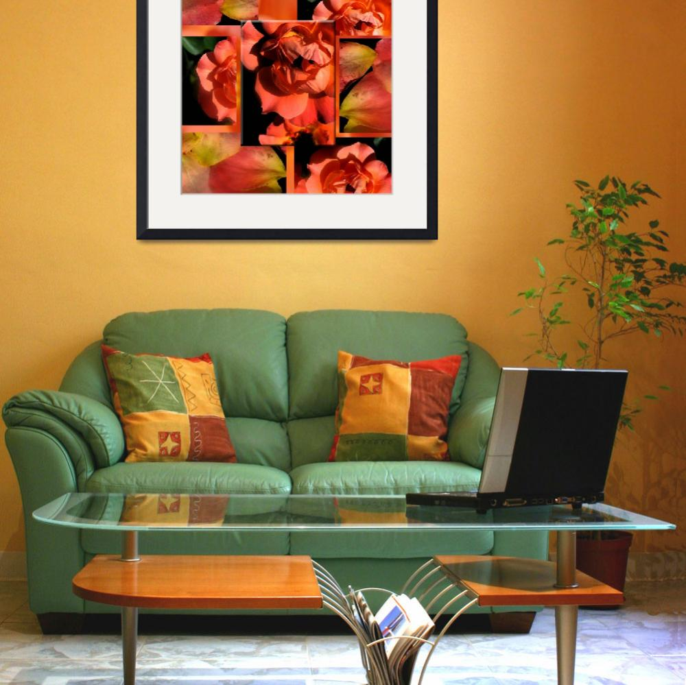 """Orange Rose Petal Collage&quot  (2007) by eye4nature"