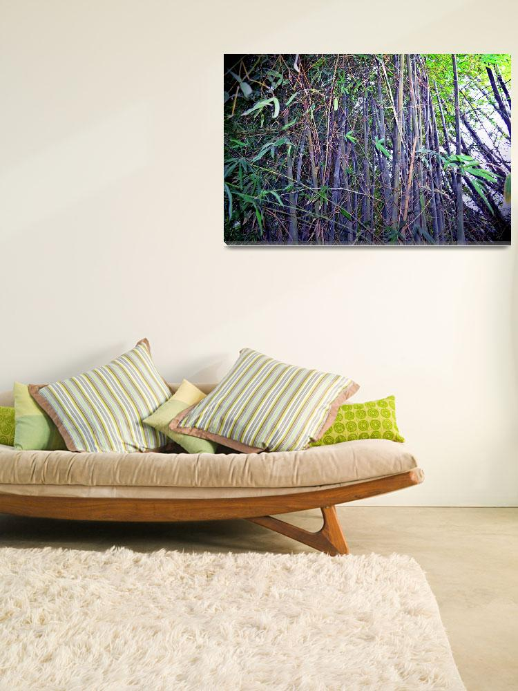 """Live your life a Bamboo&quot  (2011) by DCDdesigns"