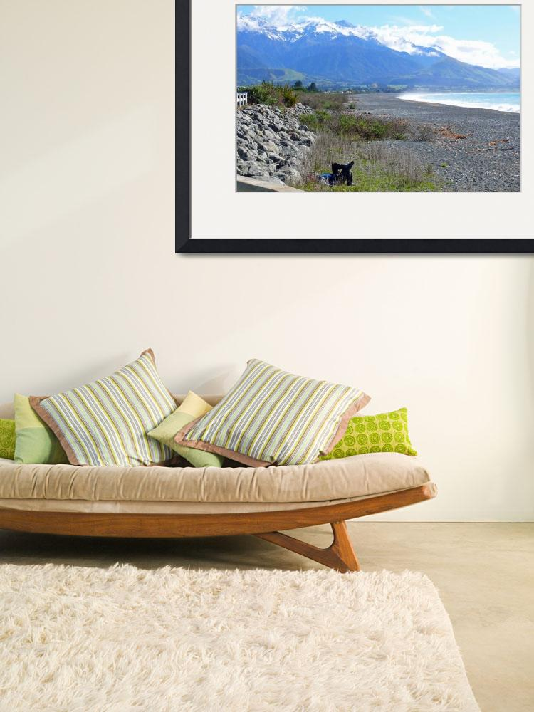 """Relaxing at the Beach, Kaikoura, NZ&quot  (2008) by stockphotos"
