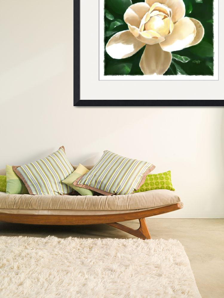 """Magnolia in Full Bloom&quot  by Tim"