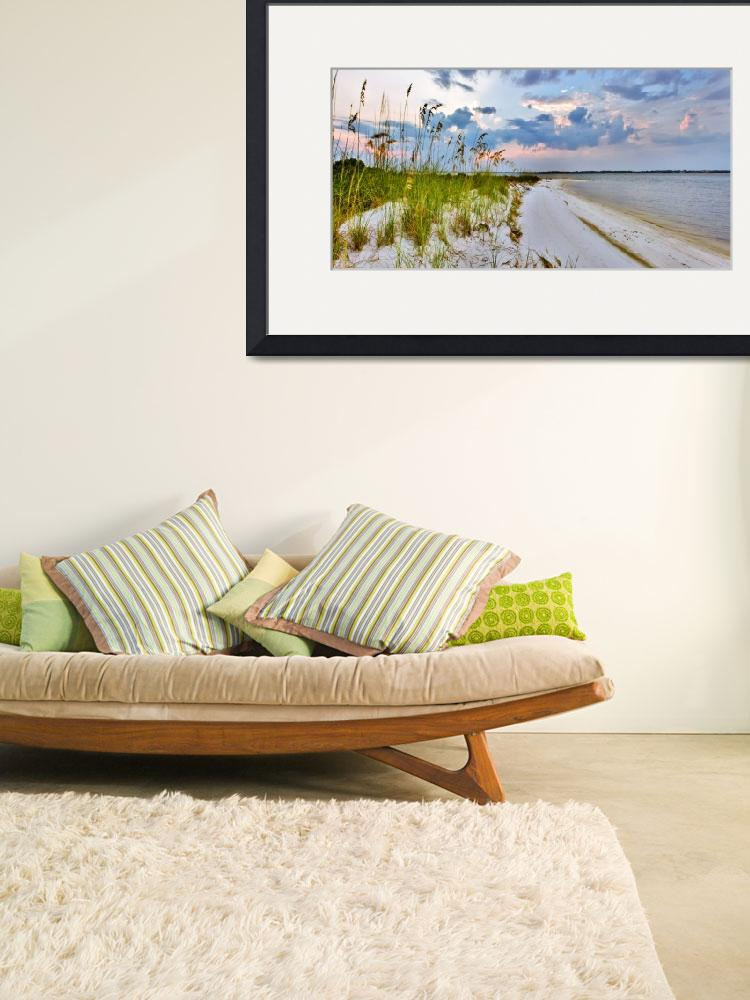 """Panoramic Landscape with Green Grass and Sea Oats&quot  (2010) by eszra"