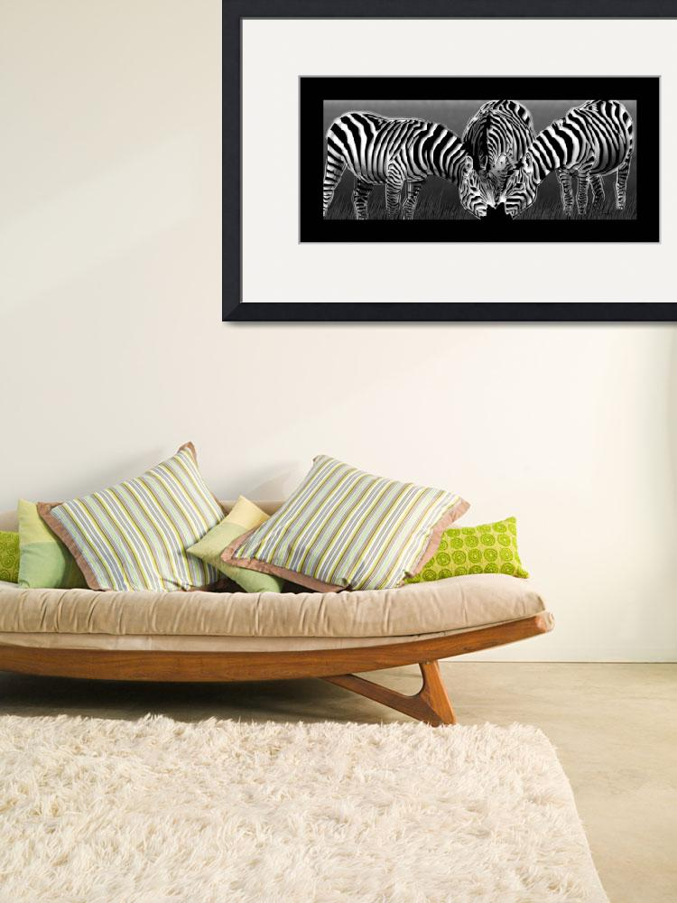 """Grey Dusk Zebras&quot  (2010) by Art_By_Design_Studio"