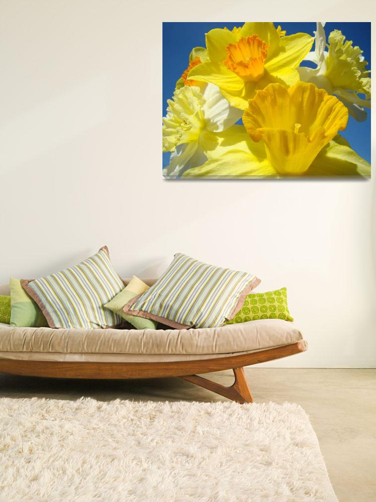 """Spring Daffodil Flower Bouquet Garden art&quot  (2011) by BasleeTroutman"