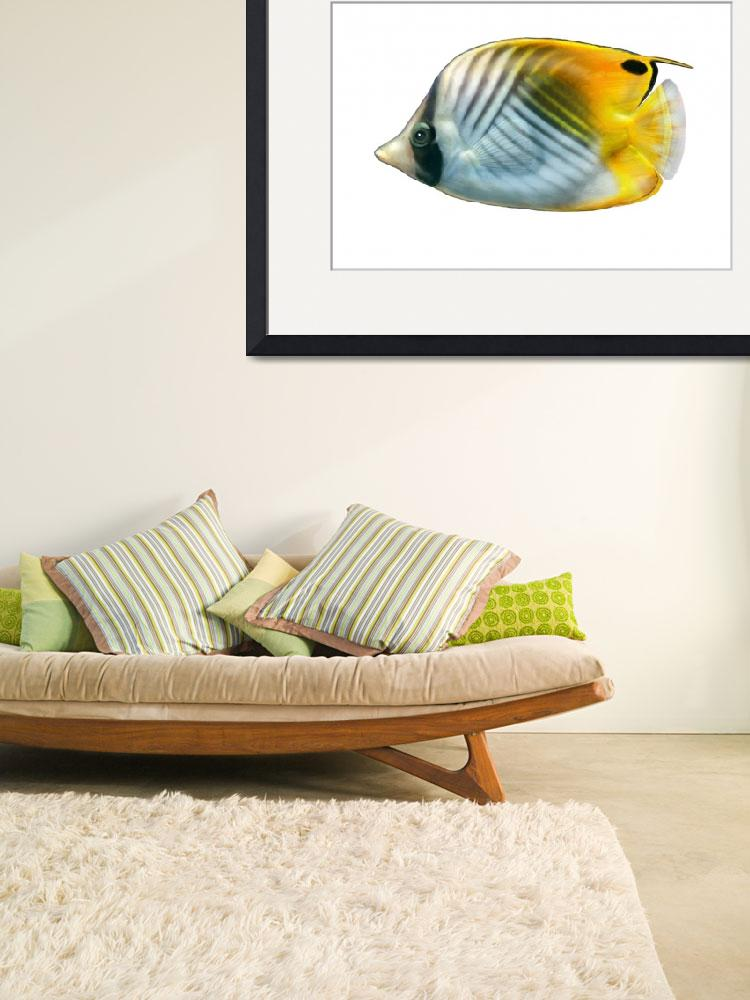 """Illustration of a threadfin butterflyfish&quot  by stocktrekimages"