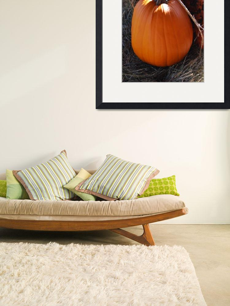 """Pumpkin time&quot  (2009) by NicholeBurke"