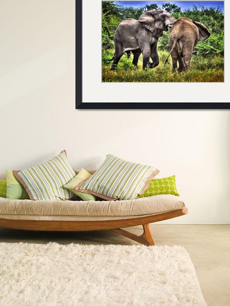 """Elephants in Africa&quot  (2013) by southafricaphotos"