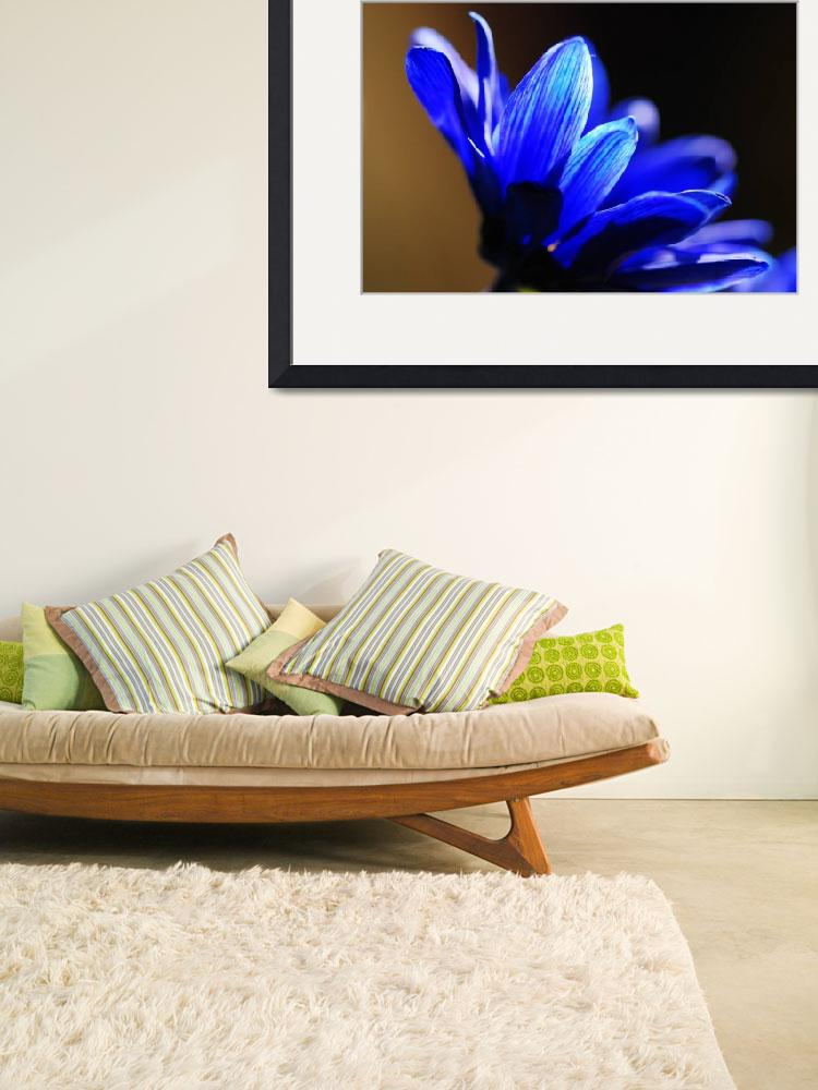 """blue flower&quot  by PhotosbyLindaAlthoff"