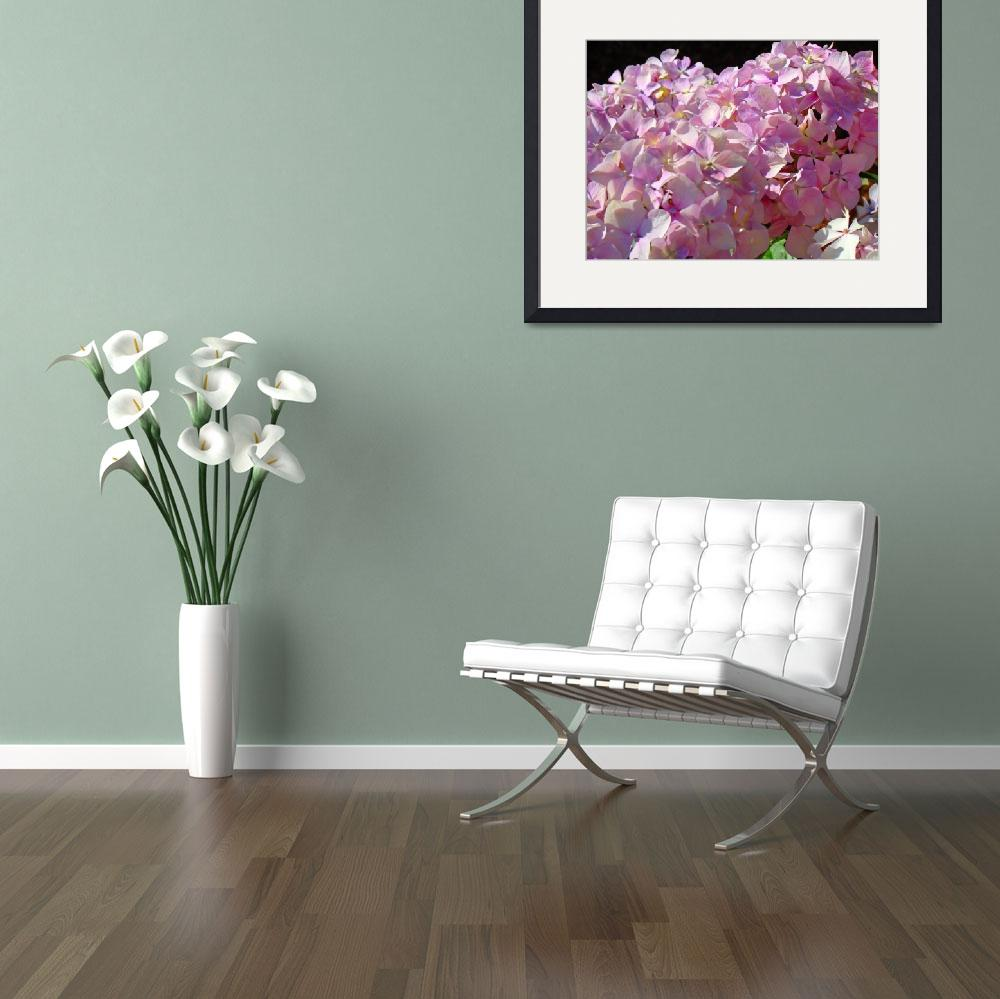 """Pink Hydrangea Floral Blossoms&quot  (2010) by BasleeTroutman"
