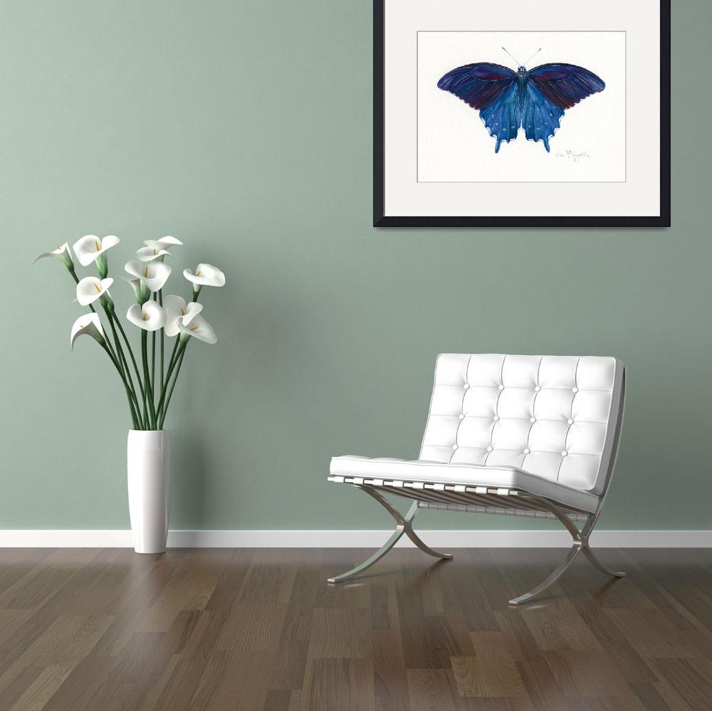 """Pipevine Swallowtail&quot  (2008) by LisaMclaughlin"