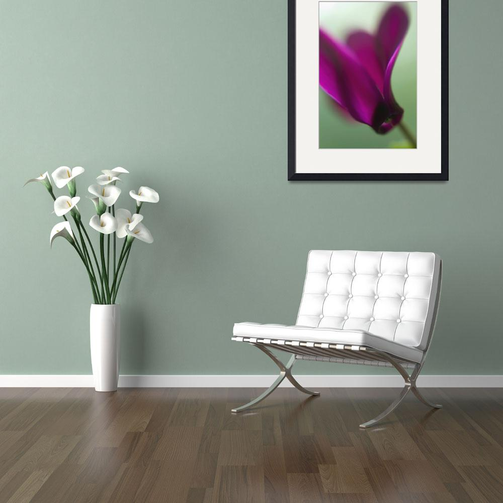 """cyclamen  dance&quot  (2006) by JulieScholz"