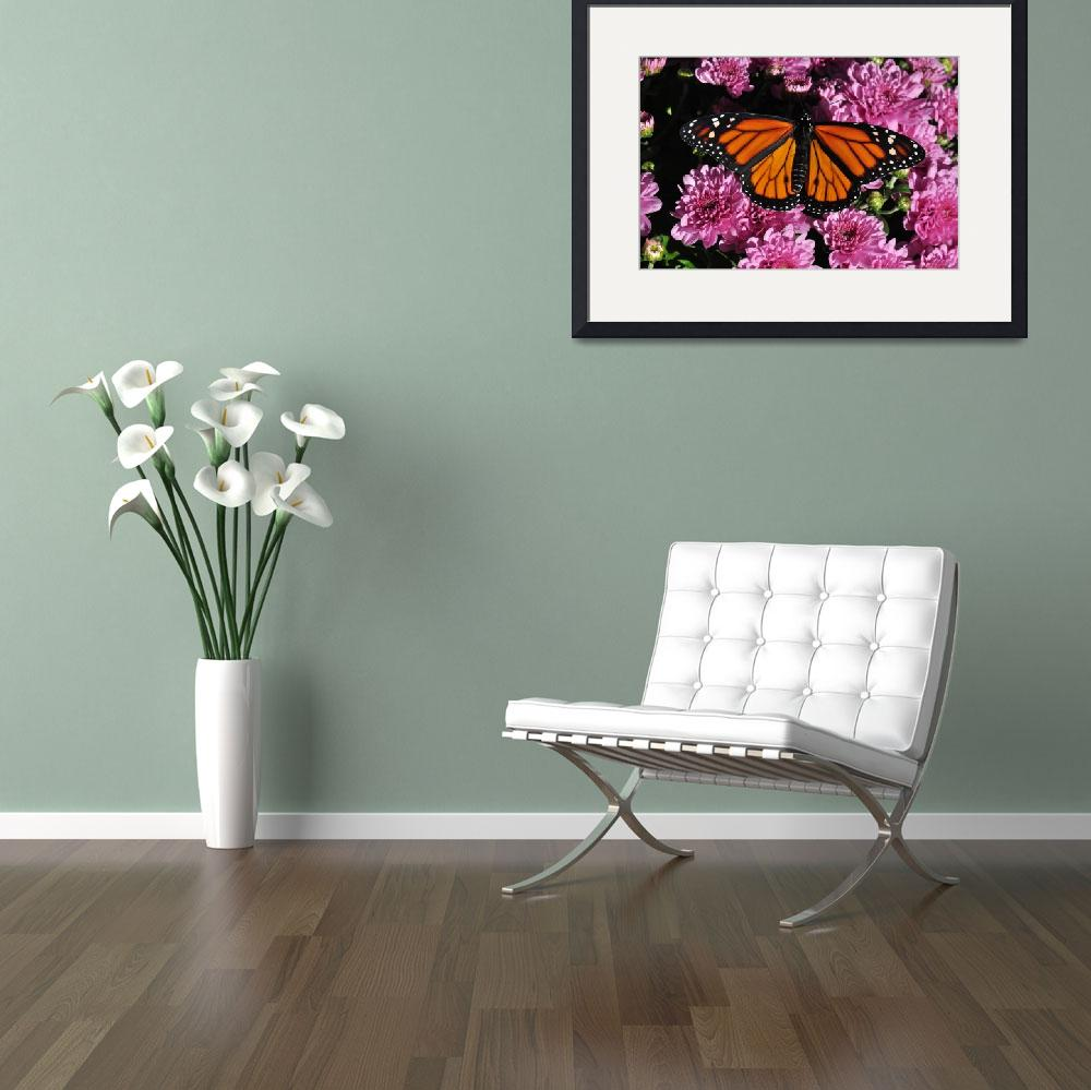 """Monarch Butterfly & Purple Mums No1&quot  (2010) by evansonart"
