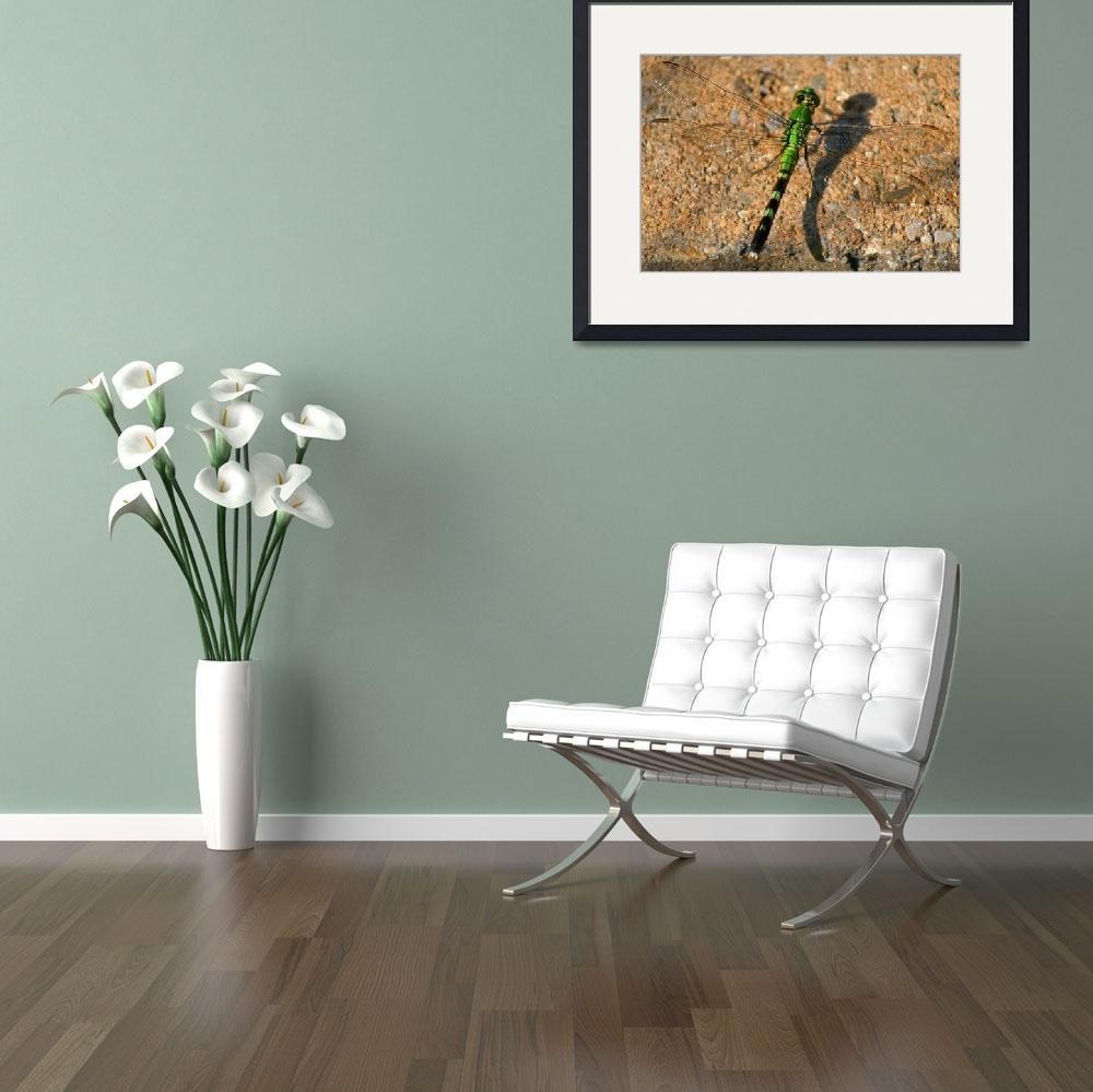 """Green Dragonfly&quot  (2012) by KsWorldArt"