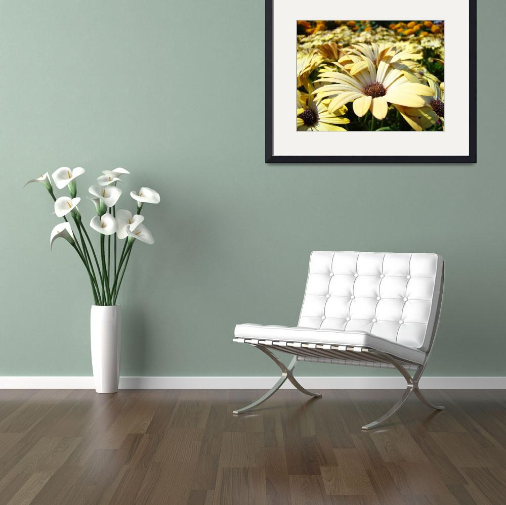 """Beautiful Summer Daisies art prints Daisy Flowers&quot  (2010) by BasleeTroutman"