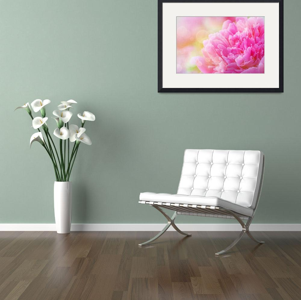 """Peony with Canvas Effect&quot  (2014) by joanhan"