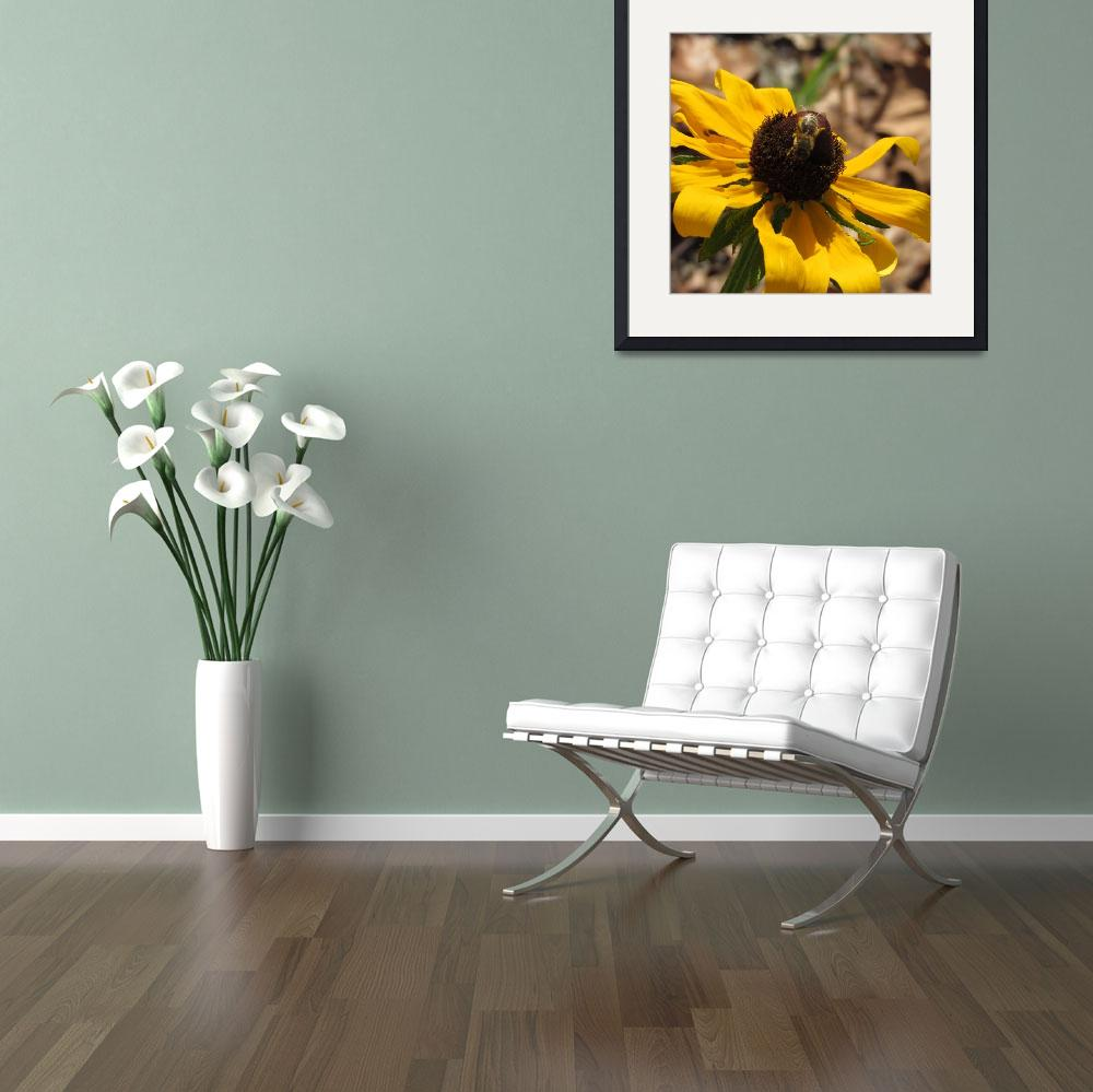 """Bee and the Black Eyed Susan&quot  by MichelleLee"