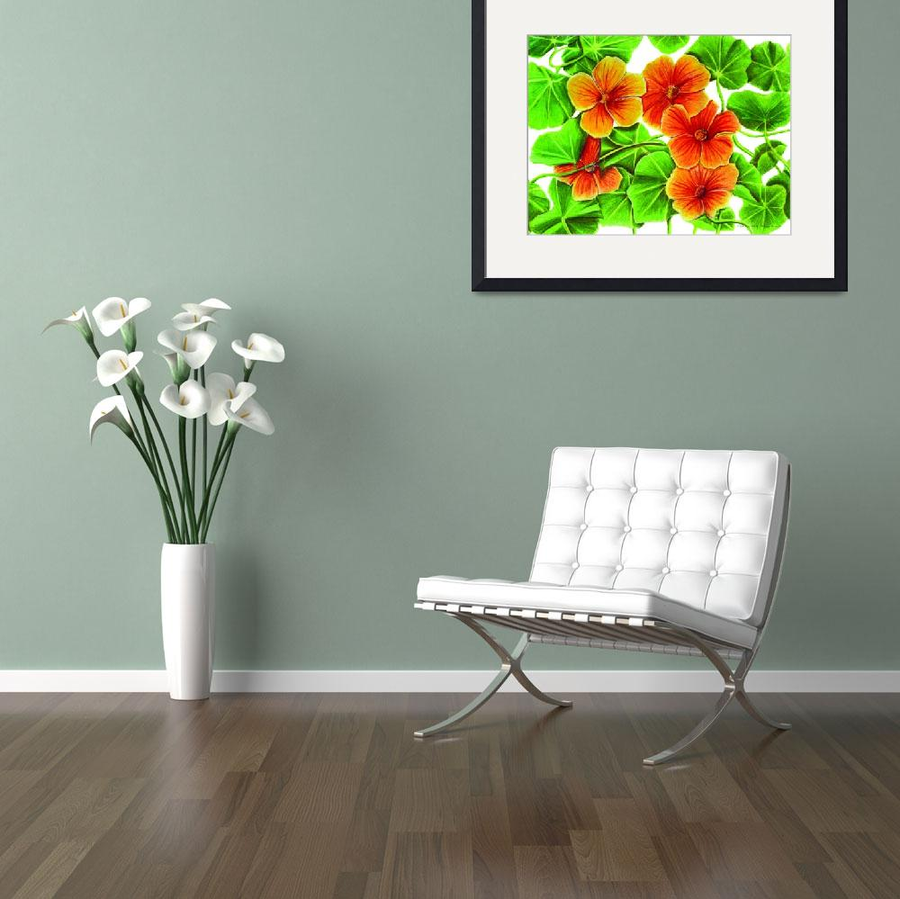 """Nasturtiums&quot  (2002) by IndianPaintbrush"