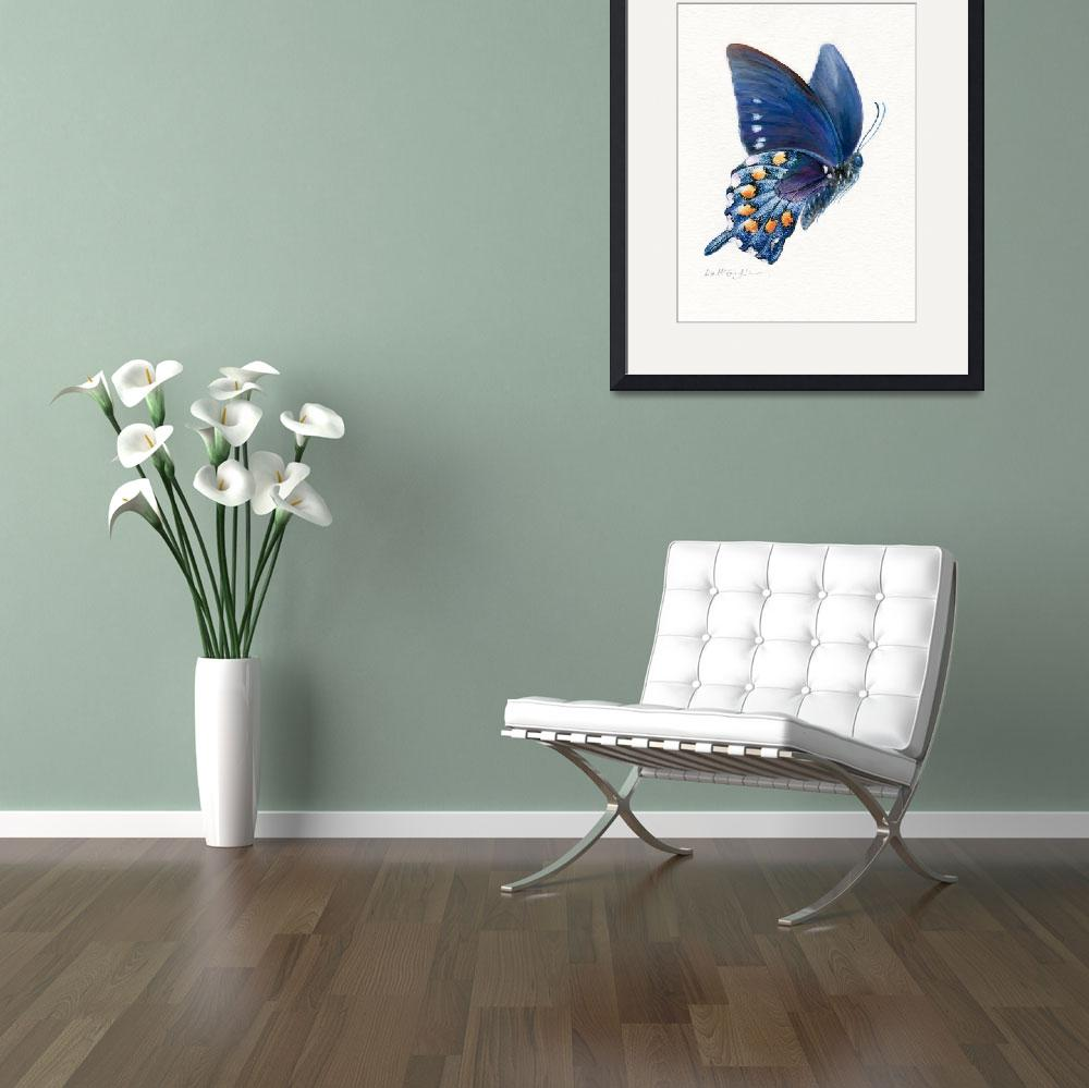"""Pipevine swallowtail butterfly in flight&quot  (2008) by LisaMclaughlin"